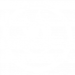 icon-fire-resistant